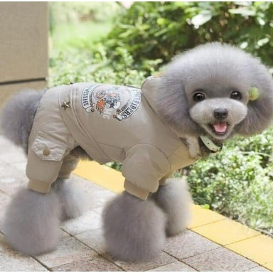 Perro de mascota ropa de invierno cálido perro abrigo verde mono espesar ropa para mascotas Teddy perros traje cachorro ropa cha